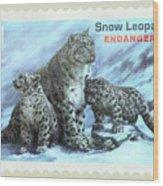 Postage Stamp - Snow Leopard By Kaye Menner Wood Print