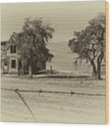 Barbed Wire - No Trespassing Wood Print