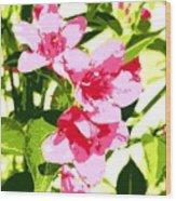 Poster Pink Wood Print