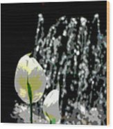 Posterized Fountain And Flower Wood Print