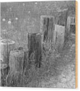 Posts In A Row Wood Print
