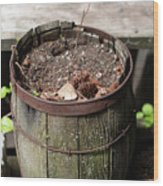 Pot Waiting For New Plant Wood Print