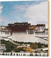 Potala Palace Dalai Lama Home Place. Tibet Kailash Yantra.lv 2016  Wood Print