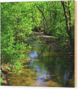 Potamac River In Maryland Wood Print