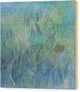 Potential Field Wood Print