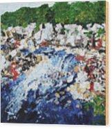 Potomac River At Great Falls  4 201687 Wood Print