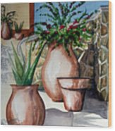 Pots And Bougainvillea Wood Print