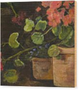 Pots Of Geraniums Wood Print