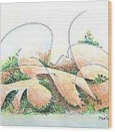 Potshards Wood Print