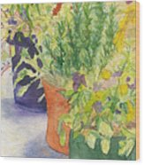 Potted Beauties  Wood Print