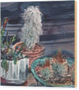 Potted Cactus Wood Print
