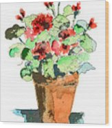 Potted Geraniums Wood Print