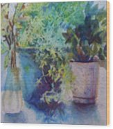 Potted Plant Study Wood Print