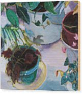 Potted Plants Wood Print by Diane Ursin