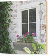 Potting Shed Window Wood Print