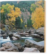 Poudre Gold Wood Print