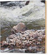 Poudre River 5 Wood Print