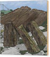 Poulnabrone Dolmen County Clare Ireland Wood Print
