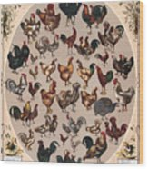 Poultry Of The World Poster Wood Print