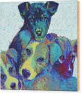 Pound Puppies Wood Print by Jane Schnetlage