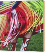Pow Wow Beauty Of The Past 9 Wood Print