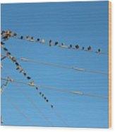 Power Line Birds Wood Print