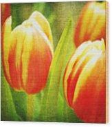 Power Of Spring Wood Print
