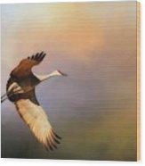Power Stroke, Sandhill Crane, Bosque del Apache, New Mexico Wood Print