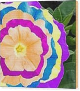 Powerflower Wood Print