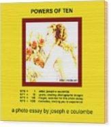 Powers Of Ten In Yellow Wood Print