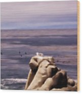 pr 132 - Nap Time in Monterey Wood Print