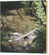 pr 134 - Babbling Brook Wood Print