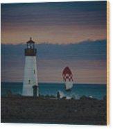 pr 203 - Evening Light Wood Print