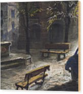 Prague Old Fountain Wood Print