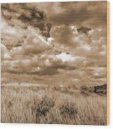 Prairie And Sky Wood Print