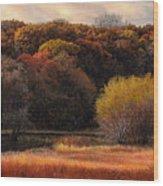 Prairie Autumn Stream Wood Print