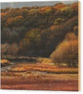 Prairie Autumn Stream No.2 Wood Print