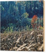 Prairie Edge Wood Print