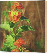 Prairie Flowers Wood Print