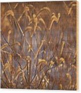 Prairie Grass Blades Wood Print