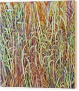 Prairie Grasses Wood Print