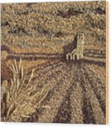 Prairie Harvest Wood Print