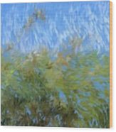 Prairie Impressions Wood Print
