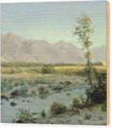 Prairie Landscape Wood Print