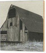 Prairie Overlook Wood Print