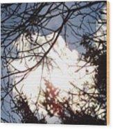 Prairie Skies 5 Wood Print