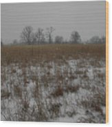 Prairie Snow Wood Print