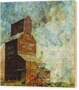 Prairie Times Wood Print