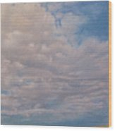 Prairie Trail Wood Print