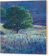 Prairie Trees Impressionistic Grunge Wood Print
